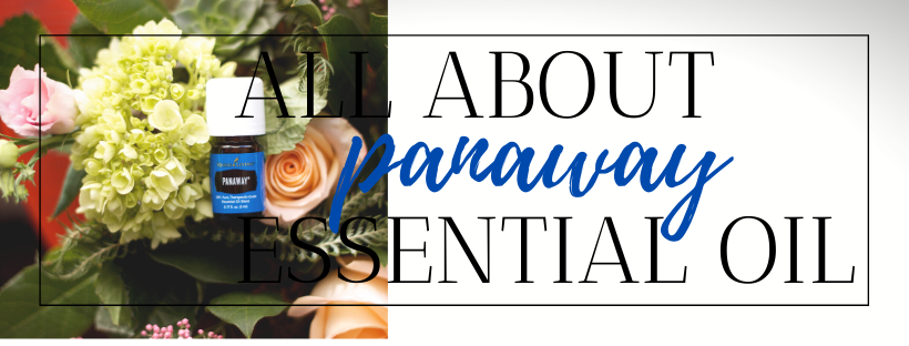 All About Panaway Essential Oil